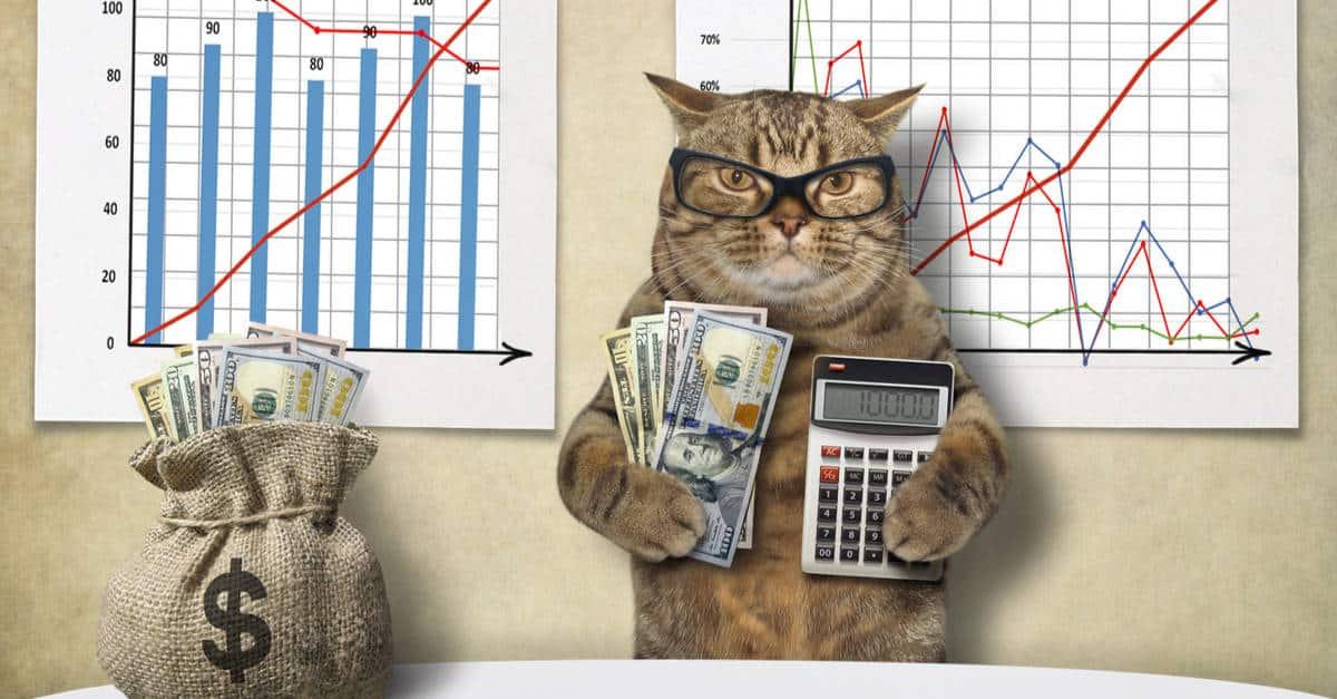 Ekonomik kediler