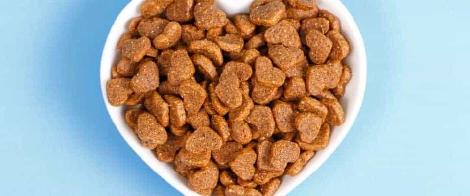 Kedi mamasında et yan ürünlerden kaçınmalı mısınız?