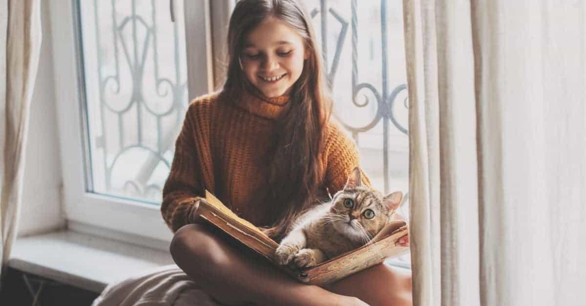 kedilerin çocuklarla ilişkisi