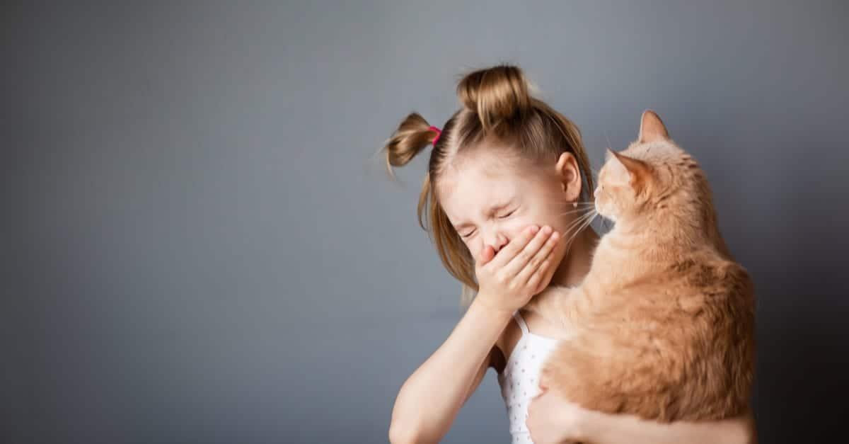 Kızın Kucağındaki Kedi