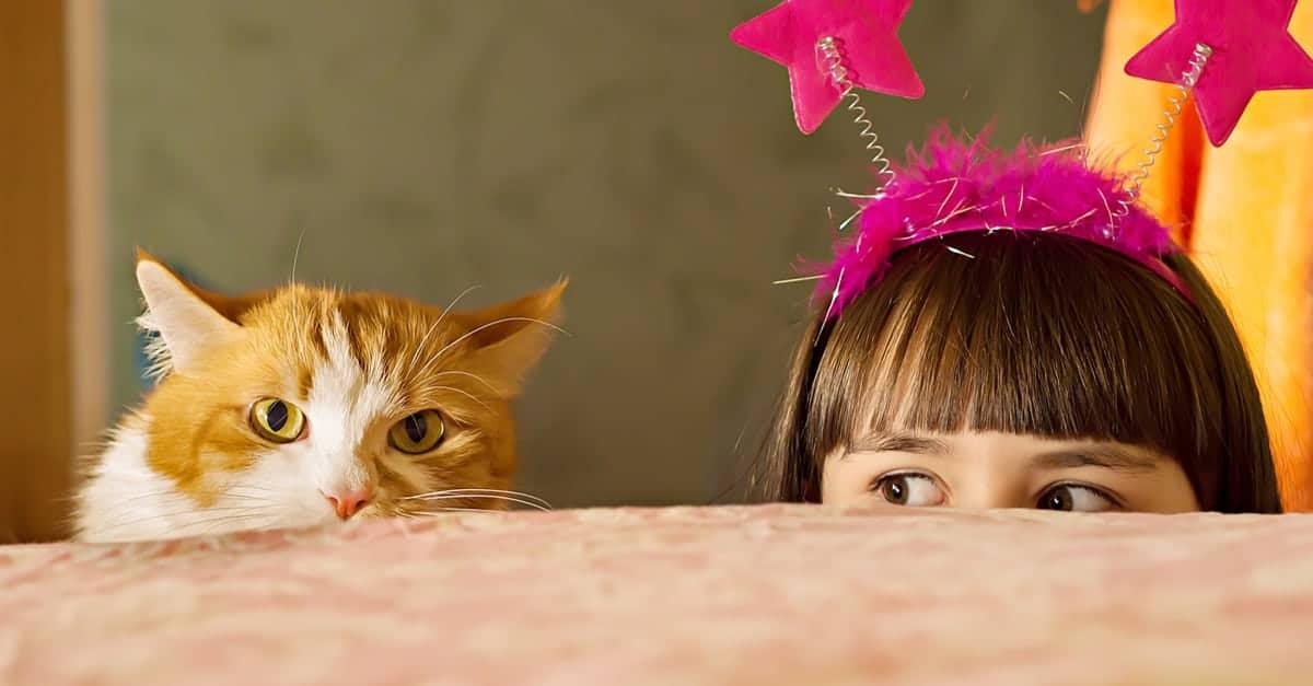 Kedi ve küçük kız
