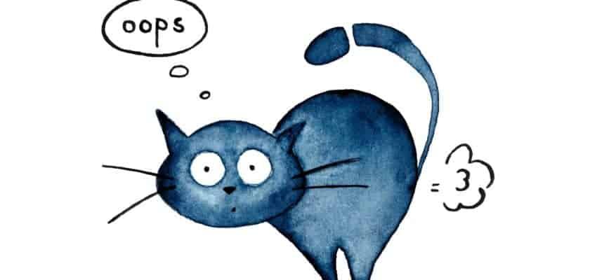 Gaz çıkaran kedi